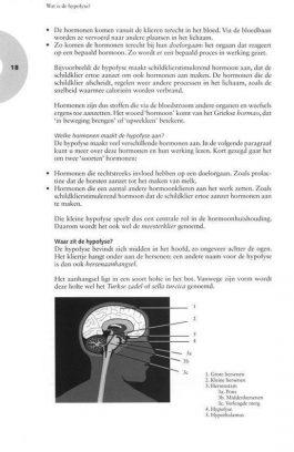 Hypofyse aandoeningen